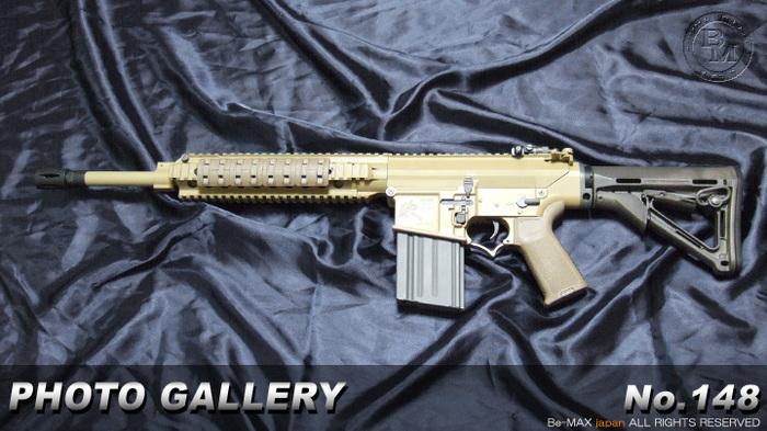 SR25 M110