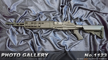 M14EBR-MOD1